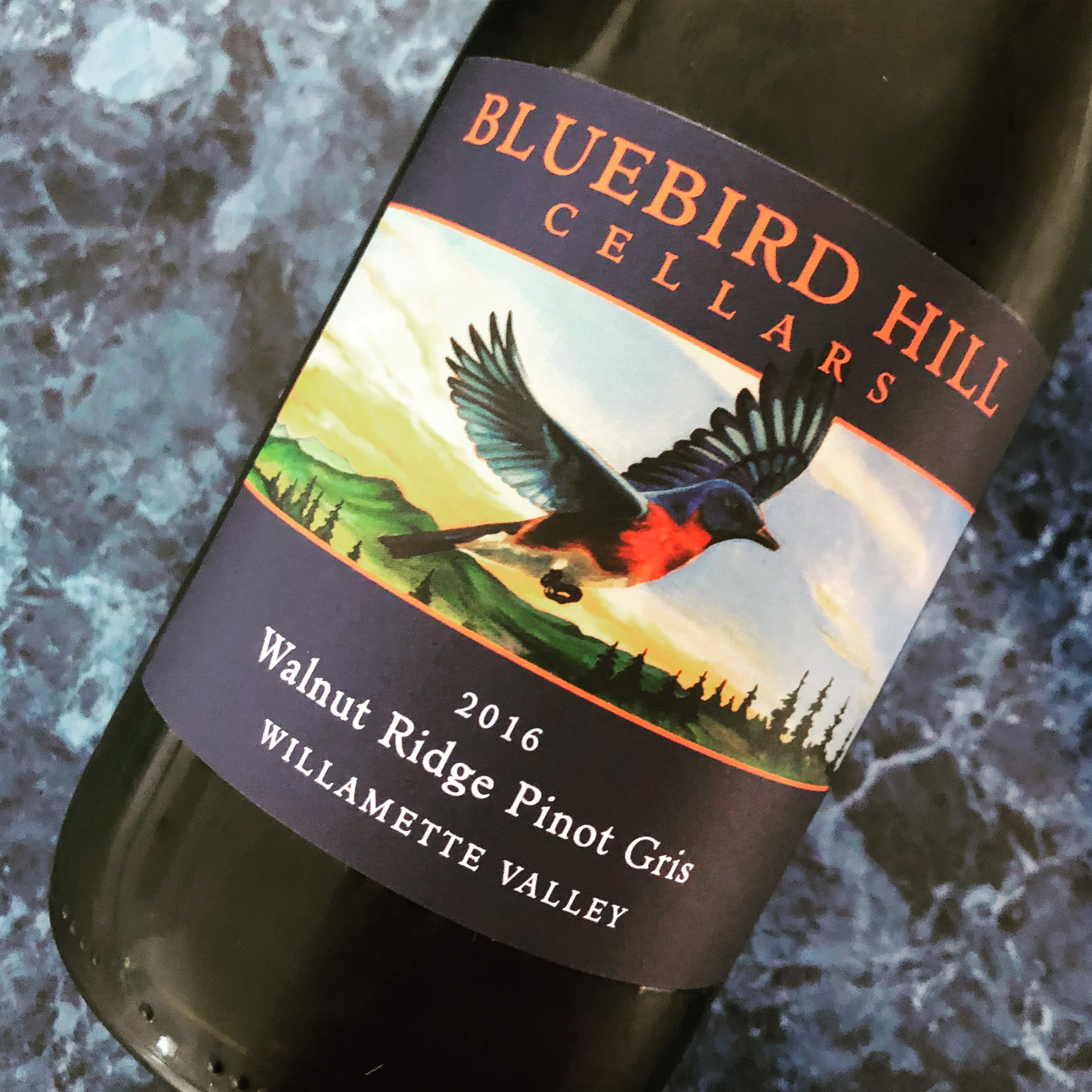 Walnut Ridge Pinot Gris 2016